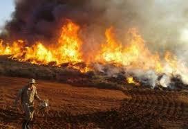 Senadores querem presença de Mourão e Salles em região afetada por incêndios no Pantanal